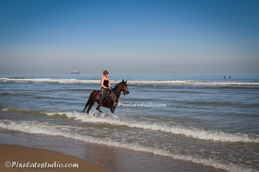 Paardrijden aan het strand