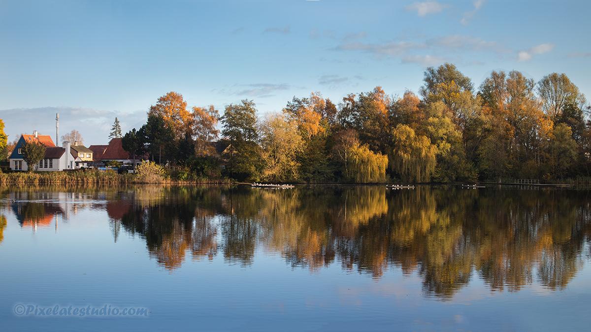 Panorama foto van een bos in herfstkleur , gemaakt in begin november in het najaar