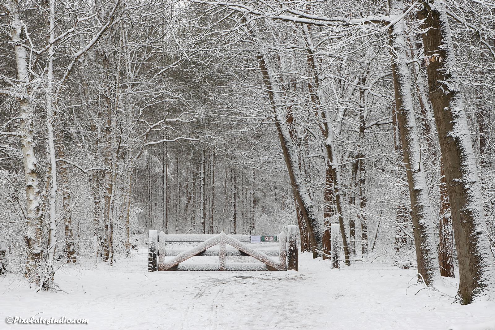foto van een met sneeuw bedekt hek