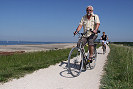 Picture of people cycling in the dunes