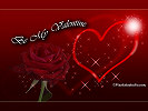 Valentine Wallpaper, valentine's day wallpaper, background pc, beautiful valentine's day wallpaper with red rose