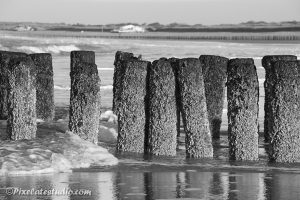 zwart-wit foto van paalhoofden