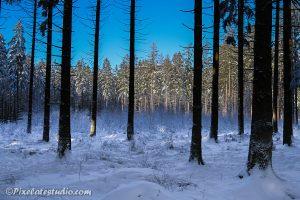Sneeuw foto Ardennen