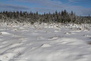 foto van dik pak sneeuw