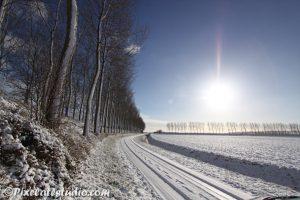 De polder in de sneeuw