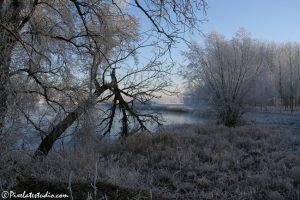 Mooie winterfoto