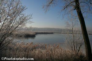 Nederlandse winterfoto