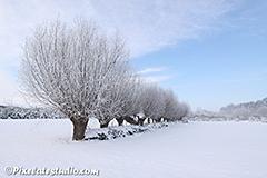 Winterfoto's , Nederland , natuurijs, winter
