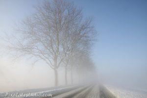 Mistig landschap in de winter