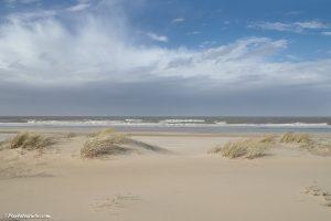 foto van duinen en strand, zonder voetsporen van mensen