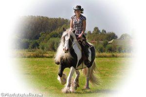 Foto van vrouw op een paard