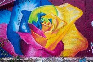 Graffiti foto van een roos