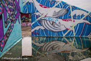 Graffiti van Walvissen