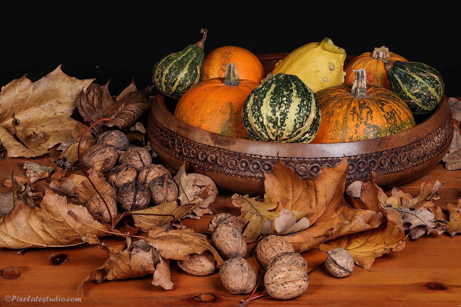 Stilleven, foto met herfst sfeer gemaakt in de studio